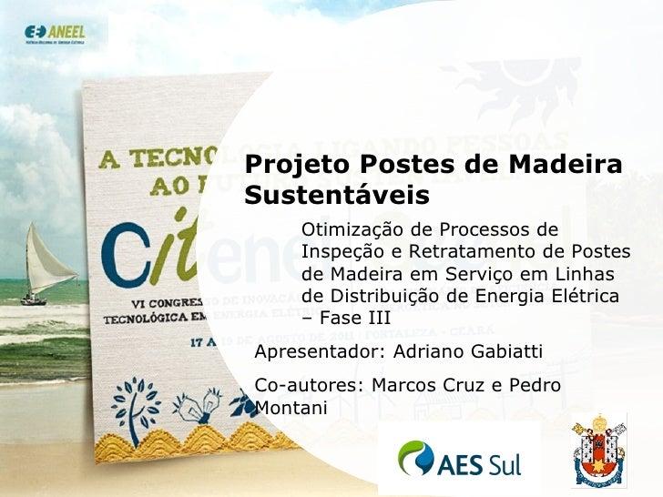Projeto Postes de Madeira Sustentáveis Otimização de Processos de Inspeção e Retratamento de Postes de Madeira em Serviço ...
