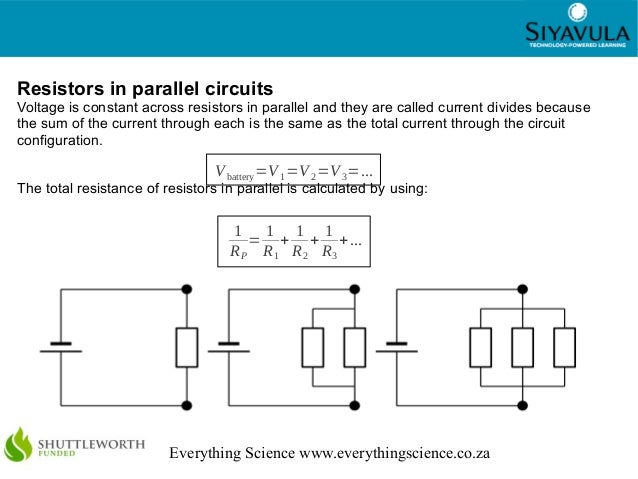 Parallel Circuits Activity