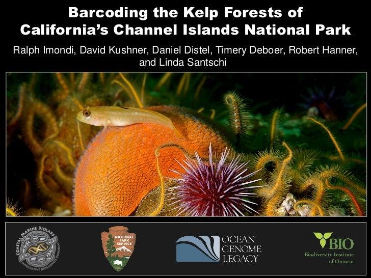 Barcoding the Kelp Forests of California's Channel Islands National ParkRalph Imondi, David Kushner, Daniel Distel, Timery...