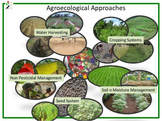 Agroecological Approaches Water Harvesting Cropping Systems Soil n Moisture Management Seed System Non Pesticidal Manageme...