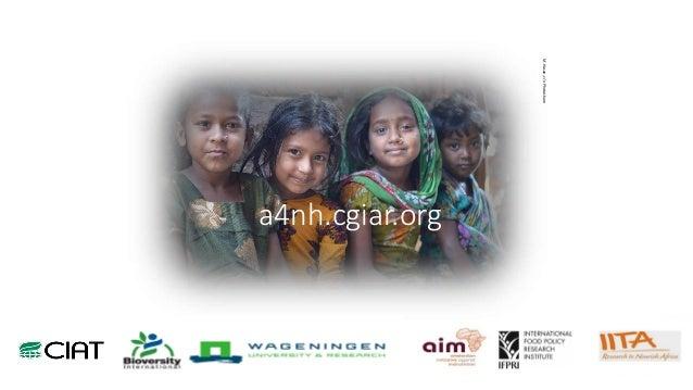 a4nh.cgiar.org M.Hasan,c/oPhotoshare