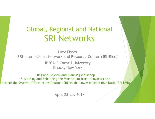 Global, Regional and National SRI Networks Lucy Fisher SRI International Network and Resource Center (SRI-Rice) IP/CALS Co...