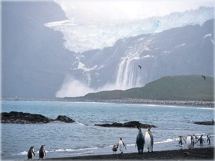 L'Antartique constituevéritablement le réfrigérateur de laterre, régularisant les courantsocéaniques.Tout impact environne...