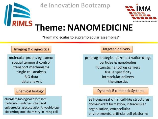 170411 nanomedicine new strategies in targeted delivery (daniela wilson), innoboot 2017 Slide 3