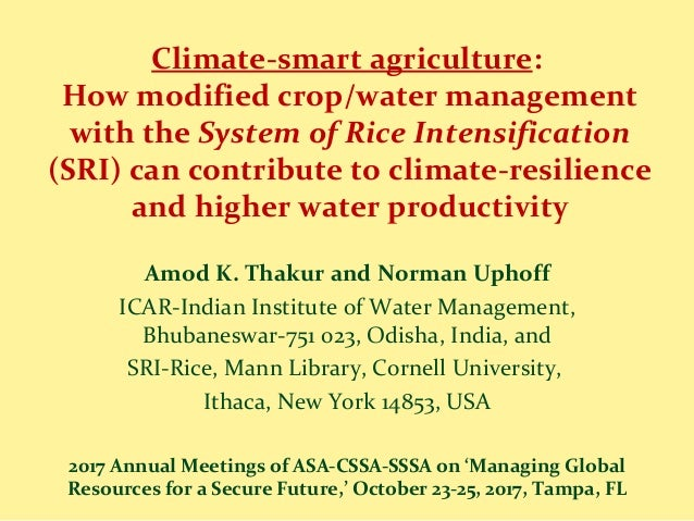 Climate-smart agriculture: How modified crop/water management with the System of Rice Intensification (SRI) can contribute...
