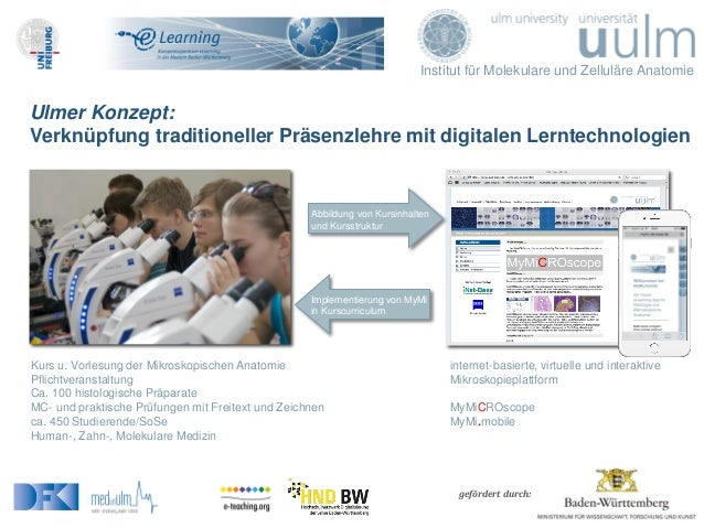 Institut für Molekulare und Zelluläre Anatomie gefördert durch: Ulmer Konzept: Verknüpfung traditioneller Präsenzlehre mit...