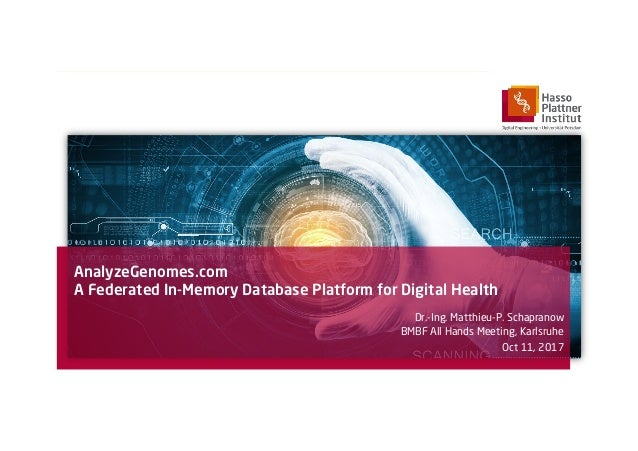 AnalyzeGenomes.com A Federated In-Memory Database Platform for Digital Health Dr.-Ing. Matthieu-P. Schapranow BMBF All Han...