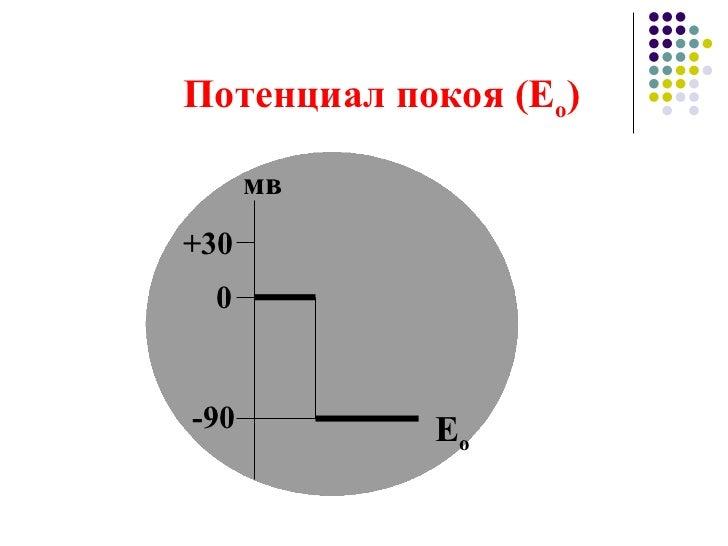 Потенциал покоя (Е о ) 0 -90 +30 мв Е о