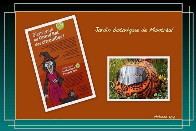 Photos picasa google web albums M.Massé music : Ievan's polka