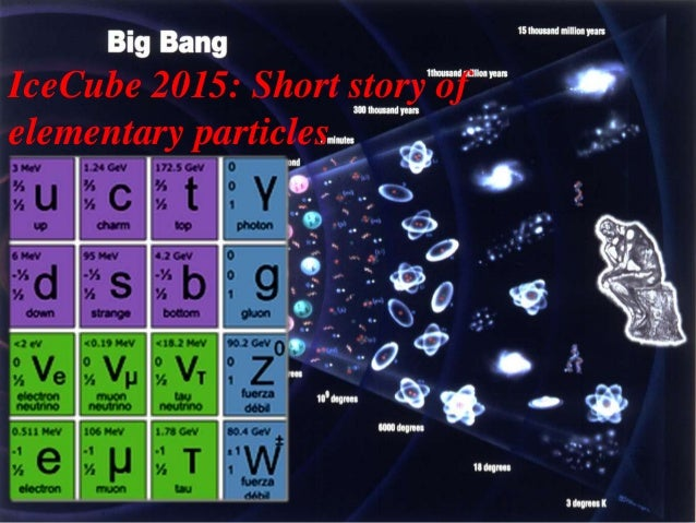 IceCube 2015: Short story of elementary particles