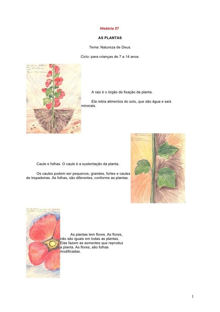 História 57                                              AS PLANTAS                                        Tema: Natureza ...