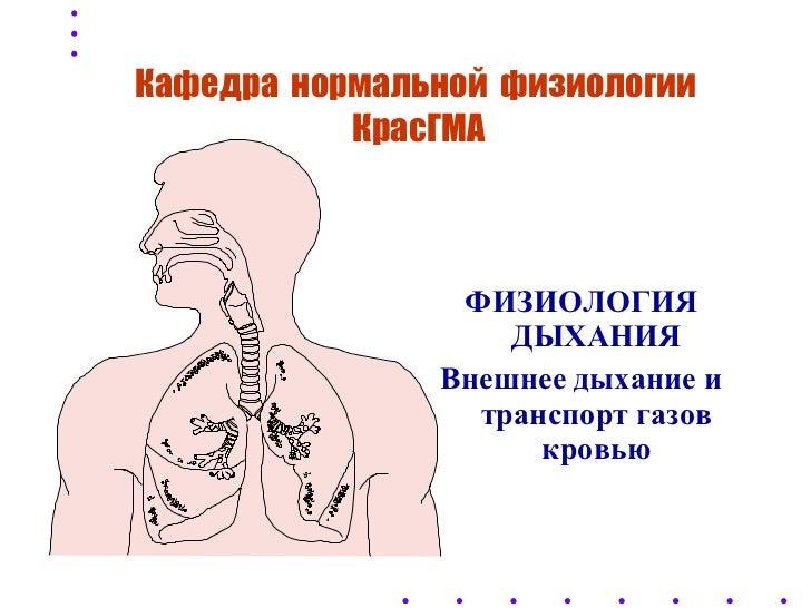 Физиология дыхания. внешнее дыхание и транспорт газов кровью
