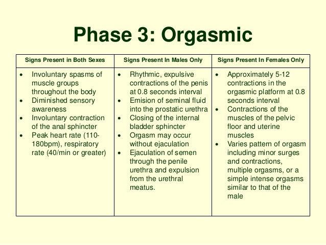 signs of female orgasm lesbians sex gifs