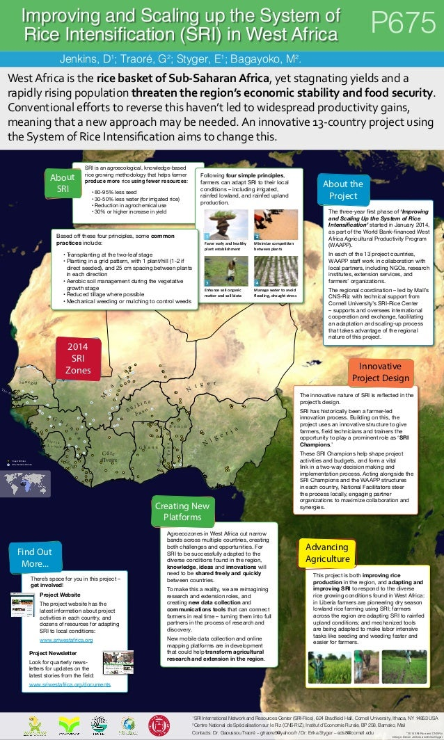Improving and Scaling up the System of  Rice Intensification (SRI) in West Africa P675  Jenkins, D1; Traoré, G2; Styger, E...