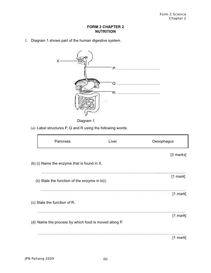 1st-grade Science Form Quiz