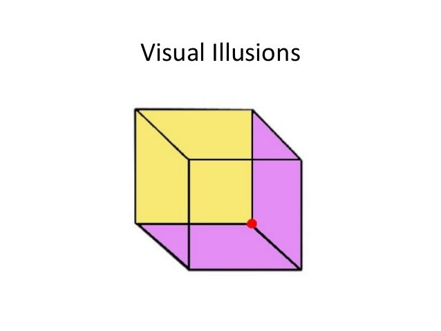 evidence for the constructivist theory of visual perception Visual perception is the ability to interpret the surrounding environment by  on shapes, geometric factors for creating part cuts, and a theory of part salience we review empirical evidence that human vision parses shapes into parts, and  in particular, the top-down influence of higher-level cognitive processes and the.