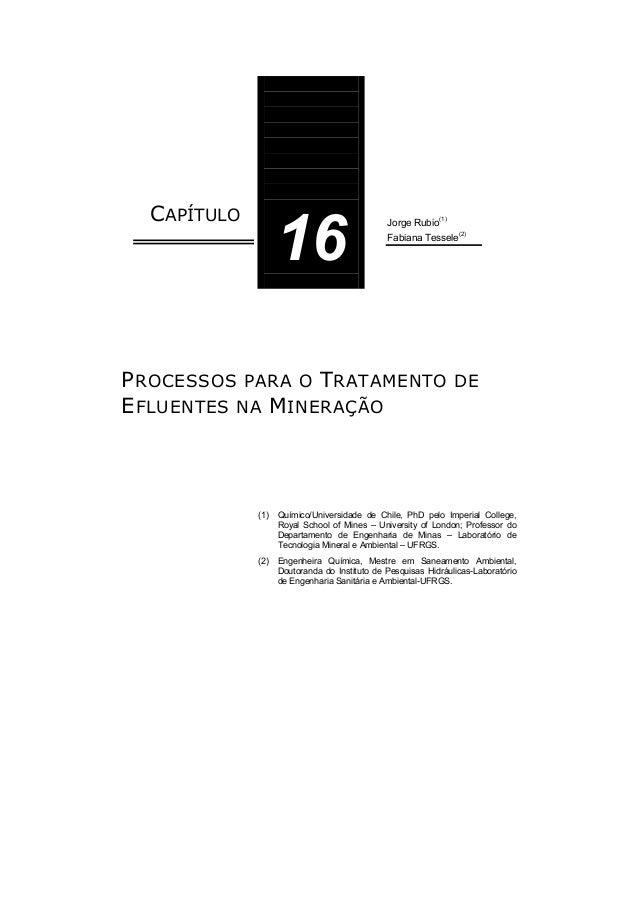 CAPÍTULO 16 Jorge Rubio(1) Fabiana Tessele (2) PROCESSOS PARA O TRATAMENTO DE EFLUENTES NA MINERAÇÃO (1) Químico/Universid...