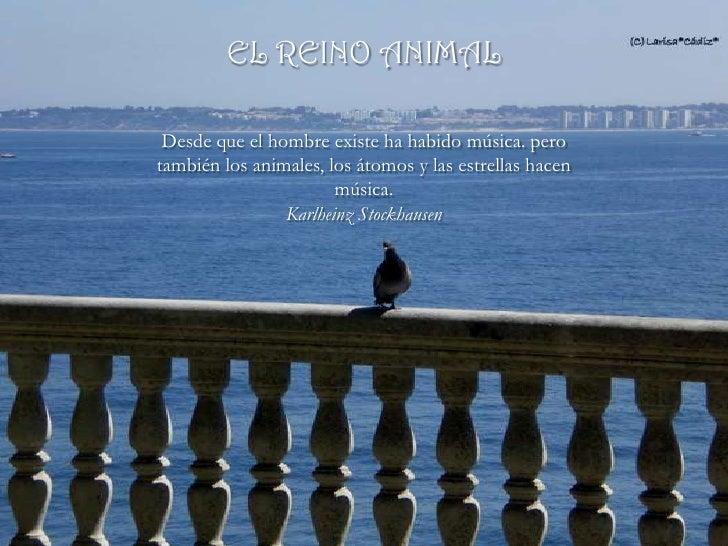 EL REINO ANIMAL   Desde que el hombre existe ha habido música. pero también los animales, los átomos y las estrellas hacen...