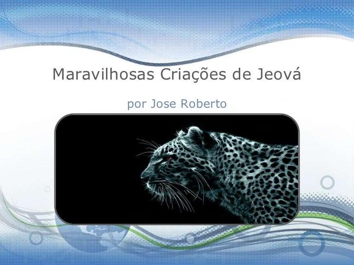 Maravilhosas Criações de Jeová        por Jose Roberto