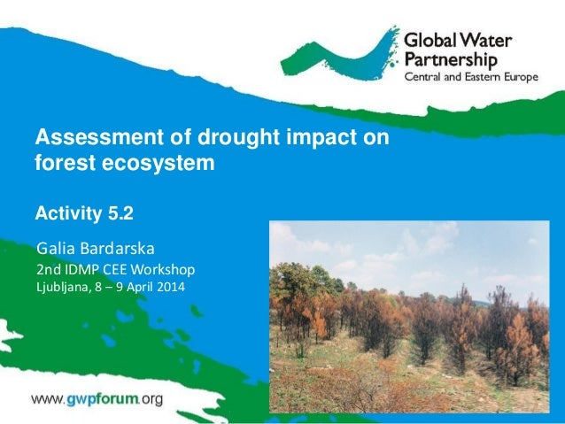 Assessment of drought impact on forest ecosystem Activity 5.2 Galia Bardarska 2nd IDMP CEE Workshop Ljubljana, 8 – 9 April...