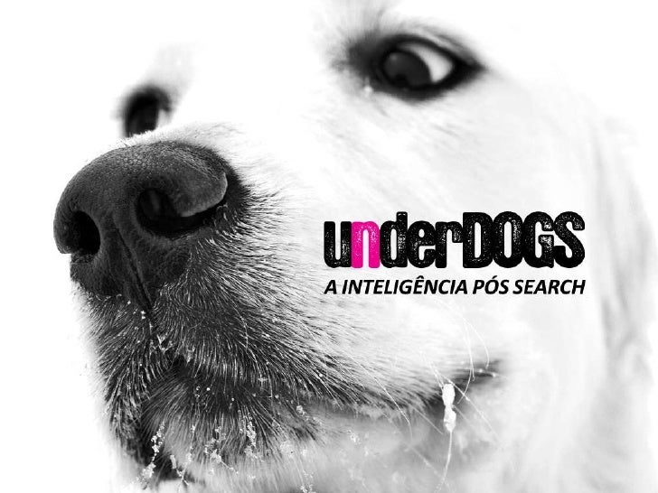 WPP, TBWA, BBDO, ABC, HAVAS, DIGITAS, OMNICON            XunderDOGS