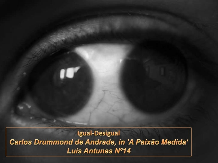 Igual-Desigual<br />Carlos Drummond de Andrade, in 'A Paixão Medida'<br />Luis Antunes Nº14<br />