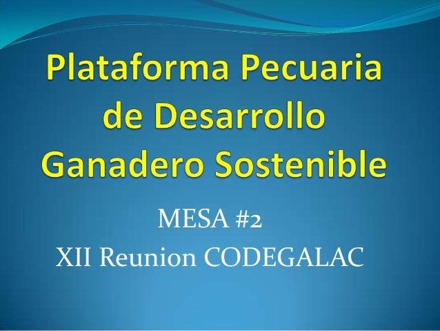 MESA #2 XII Reunion CODEGALAC