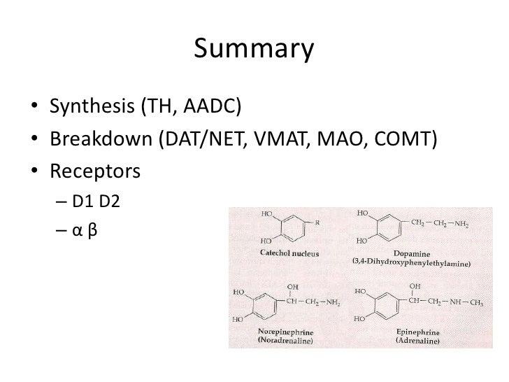 Neuropharmacology: Catecholamines