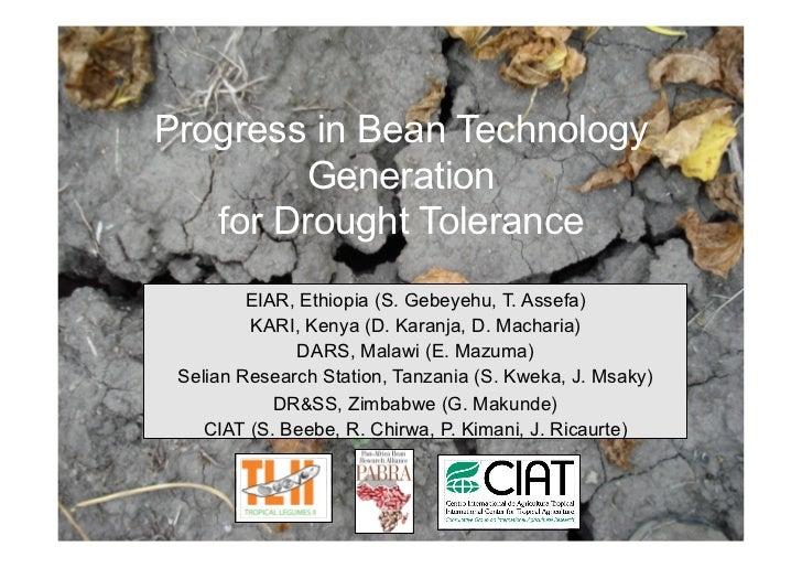 Progress in Bean Technology         Generation    for Drought Tolerance          EIAR, Ethiopia (S. Gebeyehu, T. Assefa)  ...