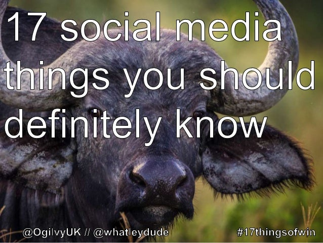 17 social media things you should definitely know