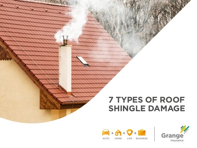7 TYPES OF ROOF SHINGLE DAMAGE