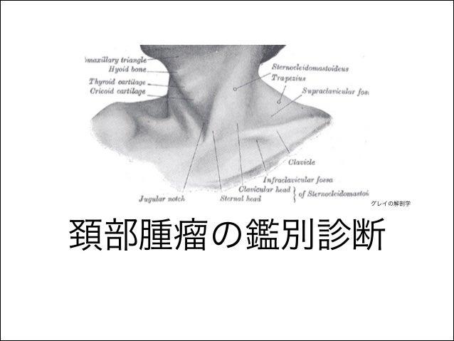 頚部腫瘤の鑑別診断 グレイの解剖学