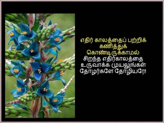 தமிழ் குறுஞ்செய்திகளின் தொகுப்பு  18ம் பாகம் Slide 2