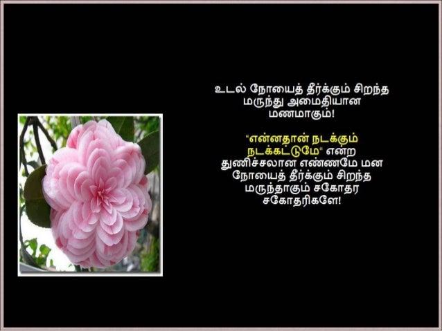 தமிழ் குறுஞ்செய்திகளின் தொகுப்பு  18ம் பாகம் Slide 3