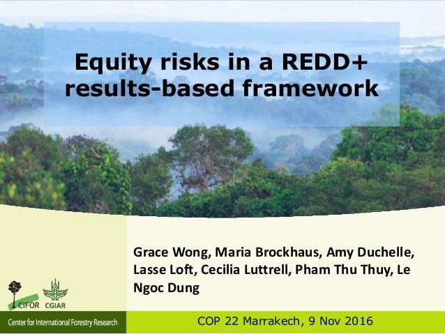 Equity risks in a REDD+ results-based framework COP 22 Marrakech, 9 Nov 2016 Grace Wong, Maria Brockhaus, Amy Duchelle, La...