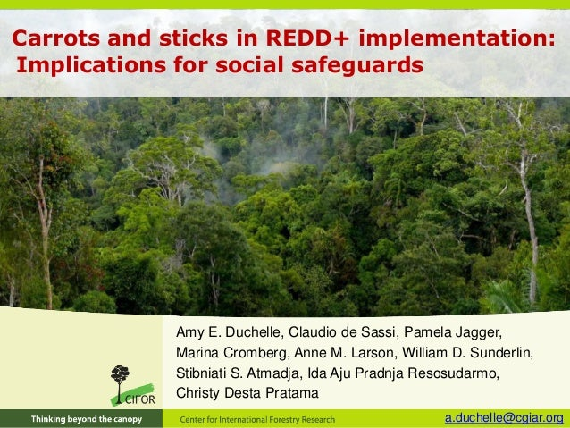 Carrots and sticks in REDD+ implementation: Implications for social safeguards Amy E. Duchelle, Claudio de Sassi, Pamela J...
