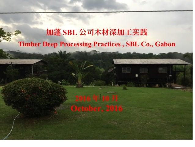 加蓬 SBL 公司木材深加工 践实 Timber Deep Processing Practices , SBL Co., Gabon 2016 年 10 月 October, 2016