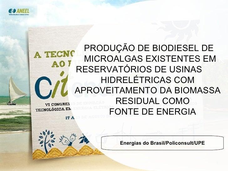 PRODUÇÃO DE BIODIESEL DE  MICROALGAS EXISTENTES EM  RESERVATÓRIOS DE USINAS  HIDRELÉTRICAS COM  APROVEITAMENTO DA BIOMASSA...