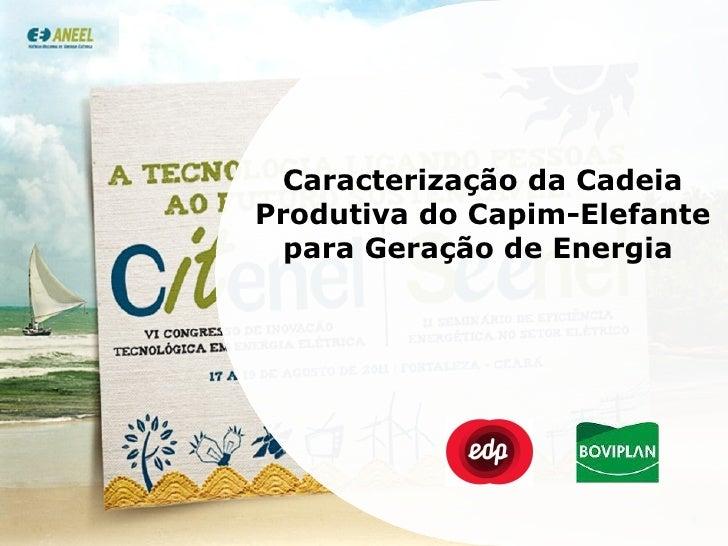 Caracterização da Cadeia Produtiva do Capim-Elefante para Geração de Energia