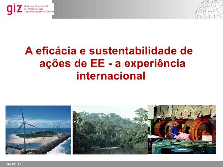 <ul><li>A eficácia e sustentabilidade de ações de EE - a experiência internacional  </li></ul>06.09.11