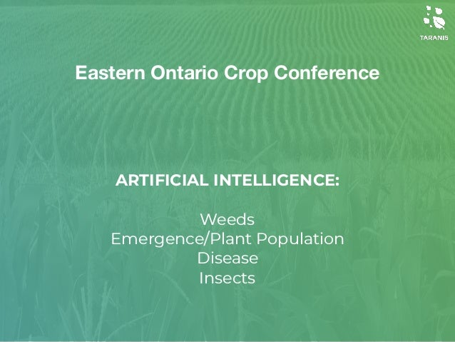 ARTIFICIAL INTELLIGENCE: 