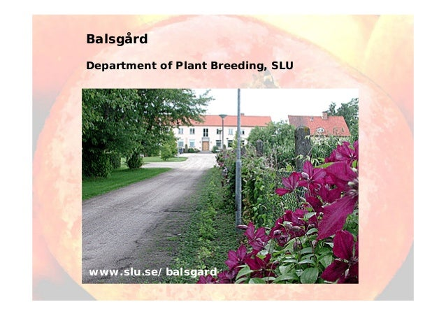 Balsgård Department of Plant Breeding, SLU www.slu.se/balsgard