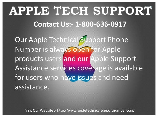 apple itunes support phone number