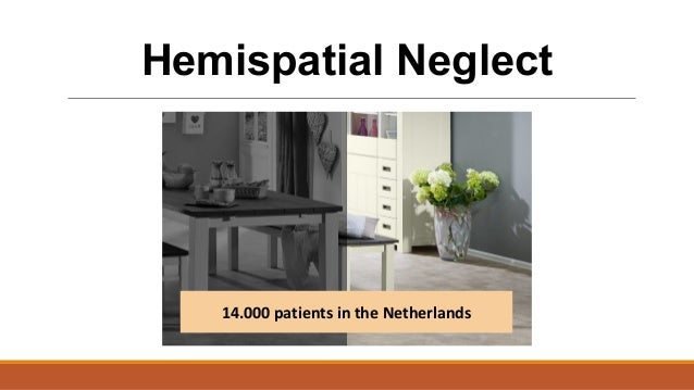14.000 patients in the Netherlands Hemispatial Neglect