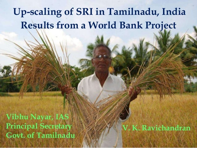Up-scaling of SRI in Tamilnadu, India Results from a World Bank Project Vibhu Nayar, IAS Principal Secretary Govt. of Tami...