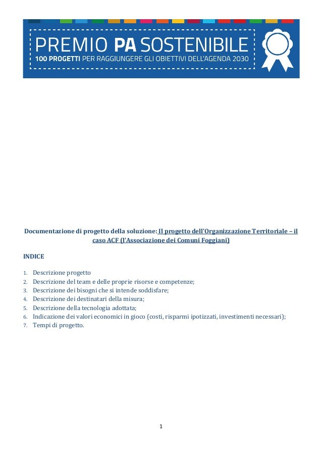 1 Documentazione di progetto della soluzione: Il progetto dell'Organizzazione Territoriale – il caso ACF (l'Associazione d...