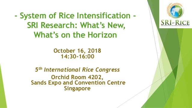 - System of Rice Intensification - SRI Research: What's New, What's on the Horizon October 16, 2018 14:30-16:00 5th Intern...