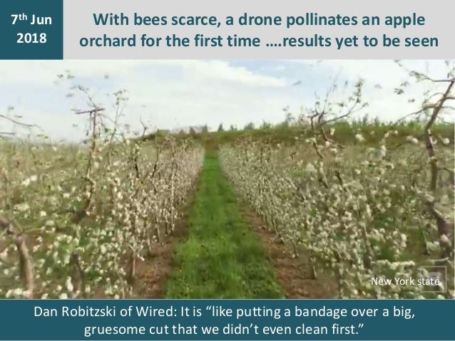 With bees scarce, a drone pollinates an apple orchard for the first time ….results yet to be seen 7th Jan 2016 7th Jun 201...