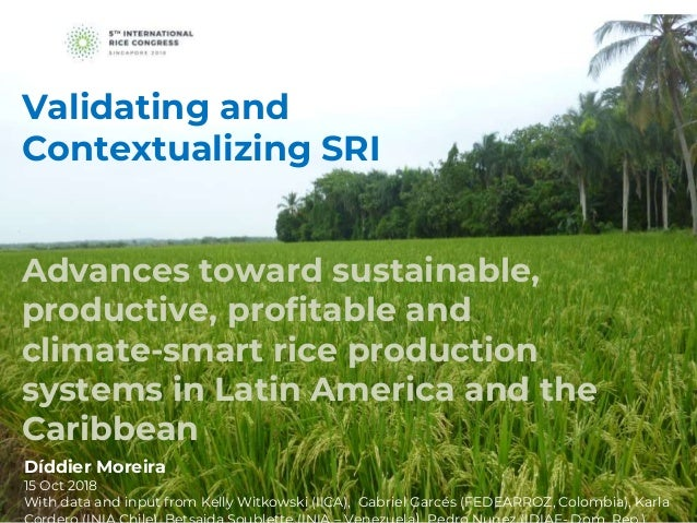 Advances toward sustainable, productive, profitable and climate-smart rice production systems in Latin America and the Car...