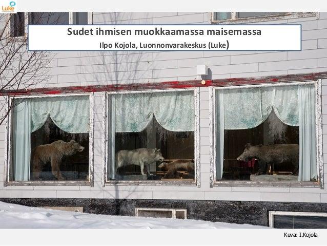 Kuva: I.Kojola Sudet ihmisen muokkaamassa maisemassa Ilpo Kojola, Luonnonvarakeskus (Luke)